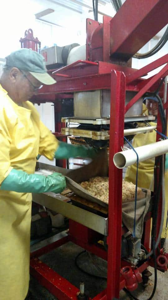Handling excess mash from old pressure press.