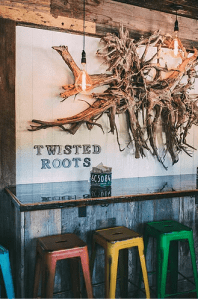 bar at Twisted Roots